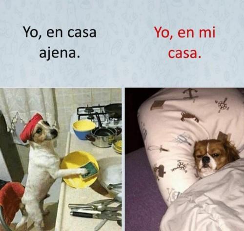 memes-graciosos-en-espanol-21.jpg