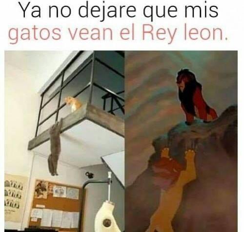 memes-graciosos-en-espanol-26.jpg