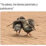 memes-graciosos-en-espanol-42