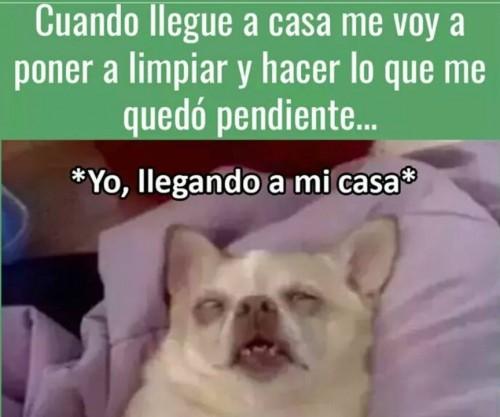 memes-graciosos-en-espanol-43.jpg
