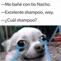 Me-bane-con-tio-Nacho.-Exelente-shampoo-wey---cual-shampoo--Momos-Sad.jpg