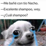 Me-bane-con-tio-Nacho.-Exelente-shampoo-wey---cual-shampoo--Momos-Sad