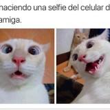 yo-haciendo-una-selfie