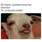 meme-de-risa-2020