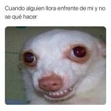 un-meme-sad