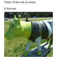 Meme-El-Burruek-No-Existe.jpg