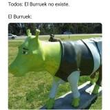 Meme-El-Burruek-No-Existe