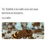 Un-meme-cuarentena-los-abejorros-de-asia