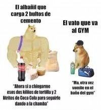 Un-meme-bien-mexicano-albanil-vs-gym.jpg