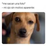 Cuando-salis-biscocho-en-las-fotos-meme