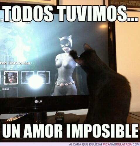 memes-amor-catwoman.jpg