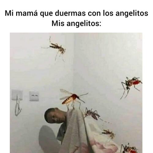Un meme de mamá y los angelitos