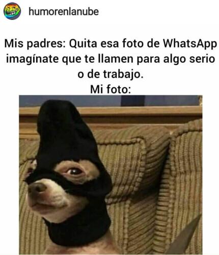 Un-meme-de-foto-WhatsApp.jpg