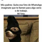 Un-meme-de-foto-WhatsApp
